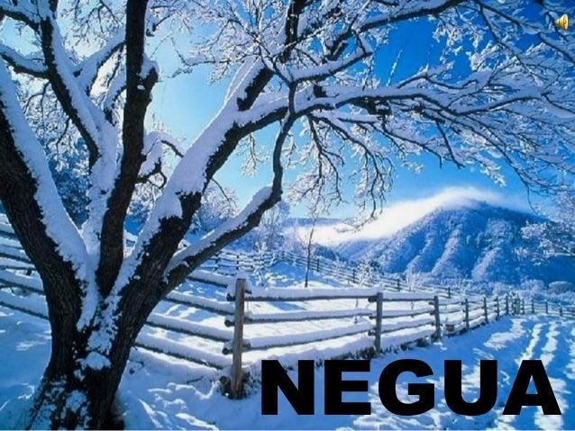 NEGUA