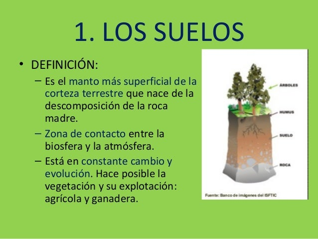 Tema 3 suelos for Significado de suelo