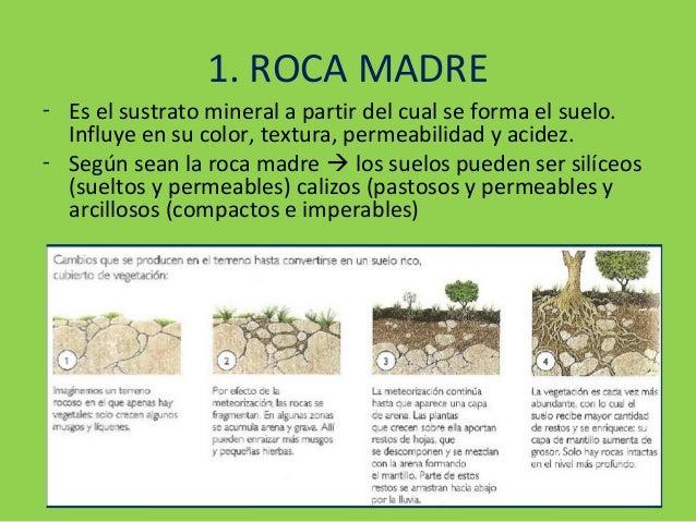Tema 3 suelos for Roca definicion