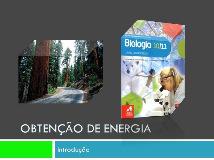 OBTENÇÃO DE ENERGIA      Introdução