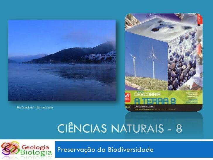 Rio Guadiana – San Luca (sp)                                    CIÊNCIAS NATURAIS - 8                                Prese...