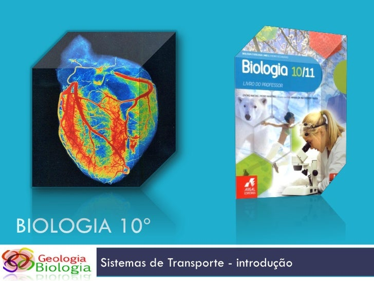 BIOLOGIA 10º        Sistemas de Transporte - introdução