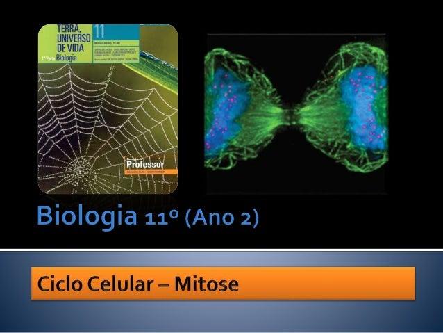  As células de um indivíduo possuem todas o mesmo material genético. Nuno Correia 09/10