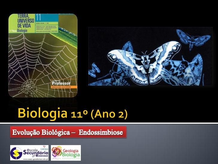    Constituição bioquímica    Código genético    Processos básicos da vida