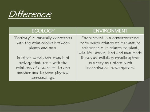 relation between ecology and environment