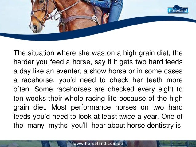 The situation where she was on a high grain diet, the harder you feed a horse, say if it gets two hard feeds a day like an...