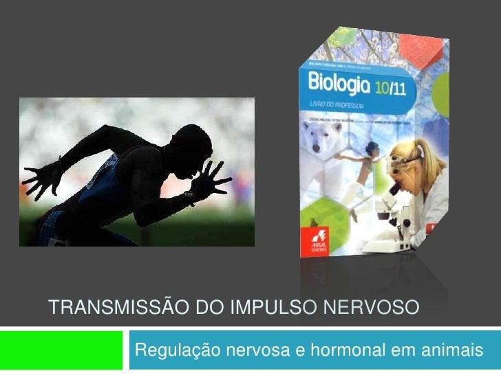 TRANSMISSÃO DO IMPULSO NERVOSO        Regulação nervosa e hormonal em animais