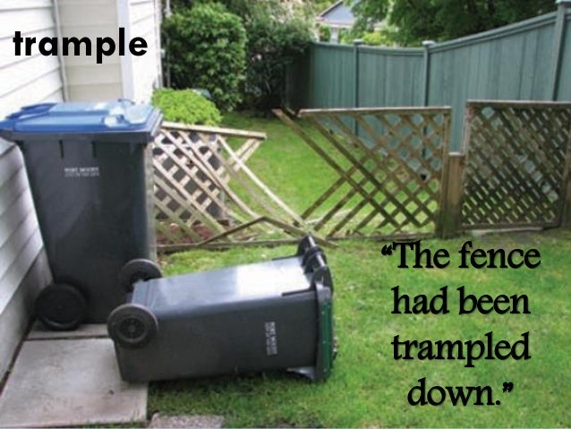 trample/ˈtramp(ə)l/  tread on and crush