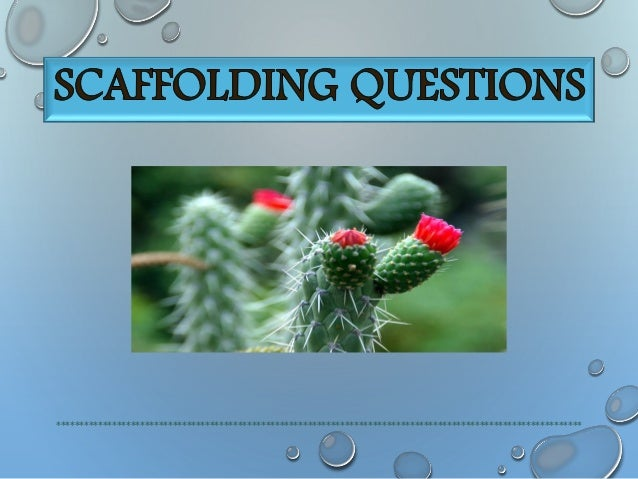 How does the cactus announce its existence?  The cactus announce it's existence through bleeding touch of its thorns.