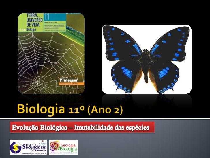    A perspectiva evolutiva     que foi sendo descrita     desde os seres     procariontes até aos     organismos multicel...