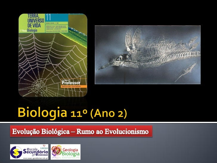    Foi a figura mais     importante e influente     na classificação e     descrição dos diferentes     organismos vivos....