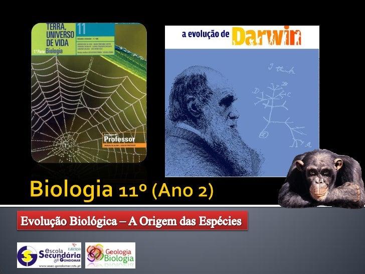   Na procura de uma     explicação para a evolução     das espécies, Darwin pôde     contar com a experiência     que el...