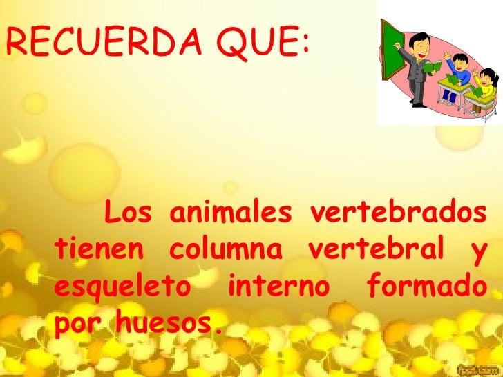RECUERDA QUE:      Los animales vertebrados  tienen columna vertebral y  esqueleto interno formado  por huesos.