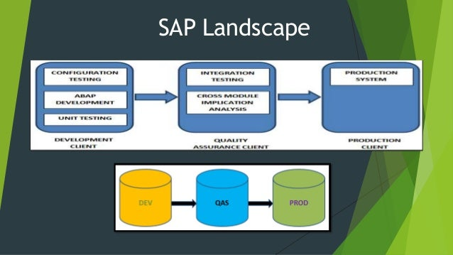 Sap Overview And Architecture