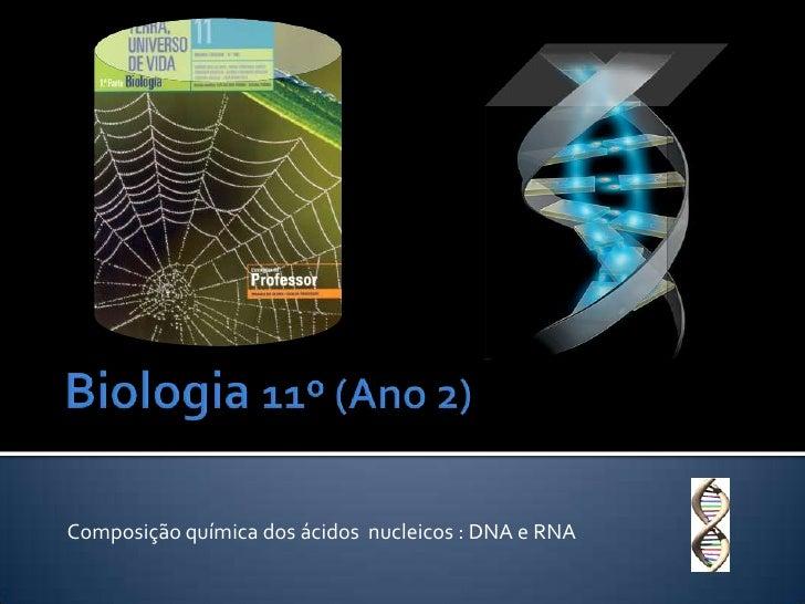 Biologia 11º (Ano 2)<br />Composição química dos ácidos  nucleicos : DNA e RNA<br />