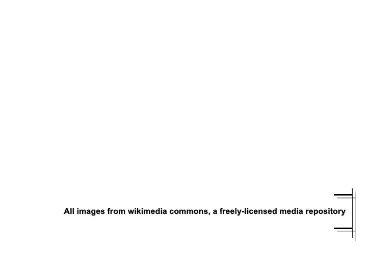 All images from wikimedia commons, a freely-licensed media repository