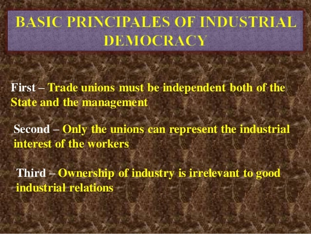 """industrial democracy 11 iii the concepts and fundamental principles of democracy the overall concept of democracy popular sovereignty """"the people"""" in a democracy democracy and equality."""
