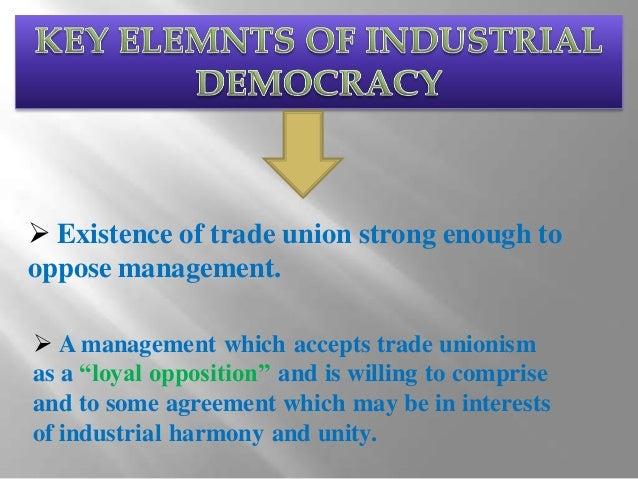 Industrial Democracy in Management