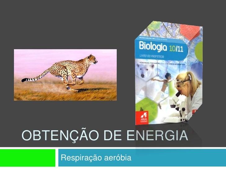 OBTENÇÃO DE ENERGIA     Respiração aeróbia
