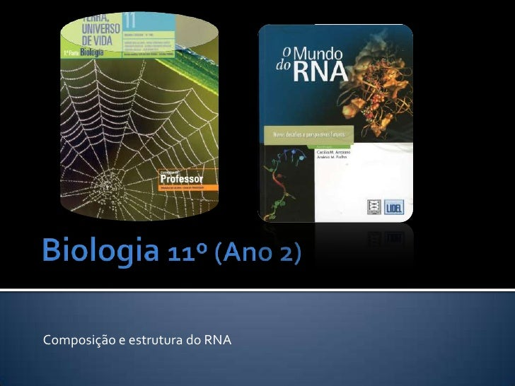 Biologia 11º (Ano 2)<br />Composição e estrutura do RNA<br />