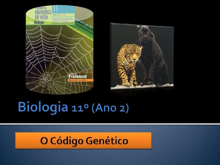 Biologia 11º (Ano 2)<br />O Código Genético<br />