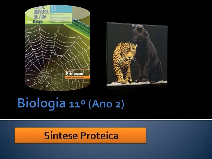 Biologia 11º (Ano 2)<br />Síntese Proteica<br />