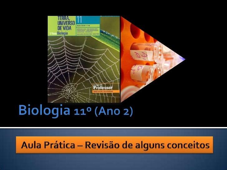 Biologia 11º (Ano 2)<br />Aula Prática – Revisão de alguns conceitos<br />