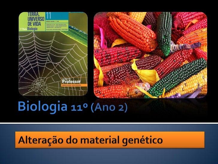    Em todos os organismos, a informação     genética está codificada na sequência de     nucleótidos dos genes.          ...