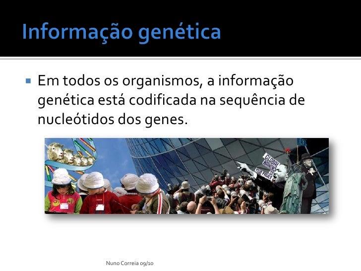 Ppt 9    AlteraçãO Do Material GenéTico Slide 2
