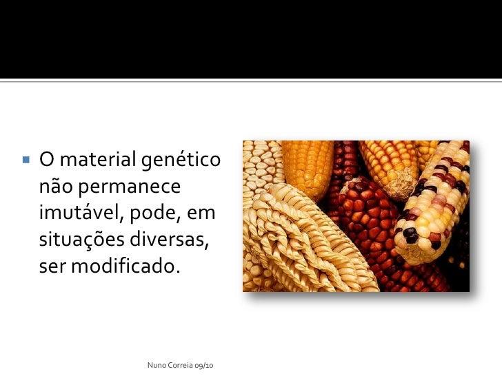 Ppt 9    AlteraçãO Do Material GenéTico Slide 3