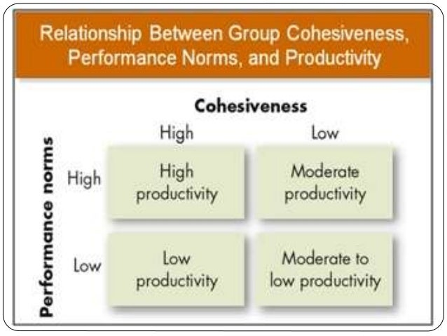 1 what factors of group cohesiveness were present in this team
