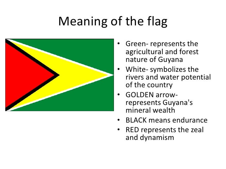 Ppt about guyana
