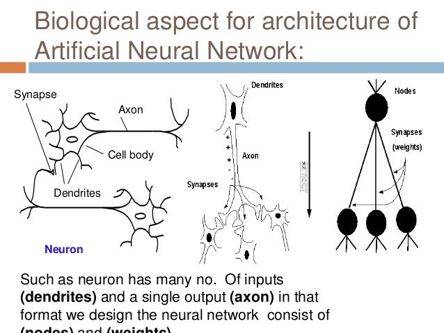 paper presentation on artificial neural networks But even the neural networks in the wan et al paper just mentioned involve quite  suppose that a few decades hence neural networks lead to artificial.