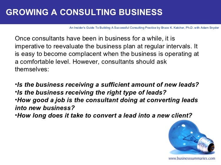 It consultant business plan
