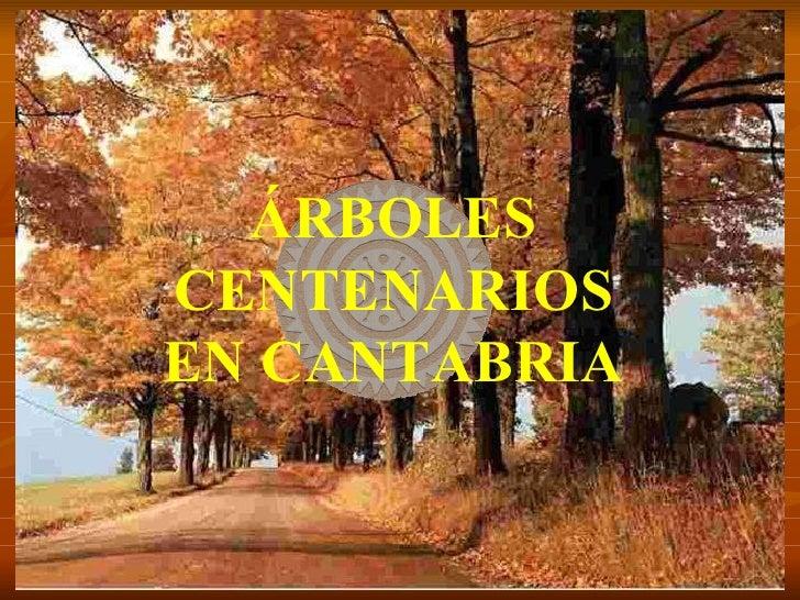 ÁRBOLES CENTENARIOS EN CANTABRIA