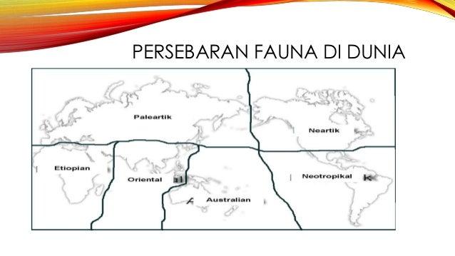 Peta Indonesia Peta Persebaran Flora Dan Fauna Di Indonesia Pdf