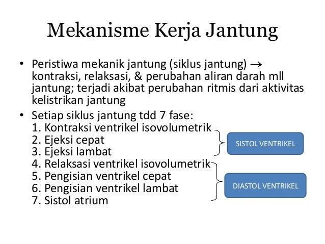 MEKANISME KARDIOVASKULAR PDF