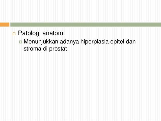 Bbc ivermectin