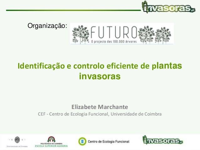 Identificação e controlo eficiente de plantas invasoras|7 Maio 15 | Vale de Cambra www.invasoras.pt 1/50 Identificação e c...