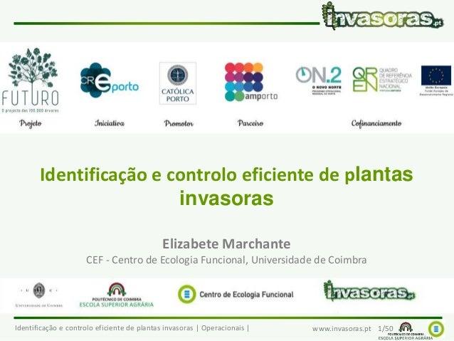 Identificação e controlo eficiente de plantas invasoras | Operacionais | www.invasoras.pt 1/50 Identificação e controlo ef...