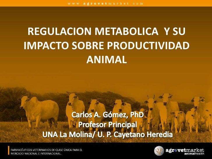 REGULACION METABOLICA  Y SU IMPACTO SOBRE PRODUCTIVIDAD ANIMAL<br />Carlos A. Gómez, PhD<br />Profesor Principal<br />UNA ...