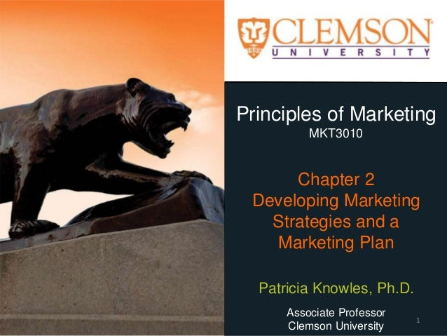 Principles of Marketing MKT3010 Chapter 2 Developing Marketing Strategies and a Marketing Plan Patricia Knowles, Ph.D. Ass...