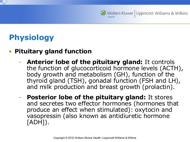 Introduction to Pituitary Hormones