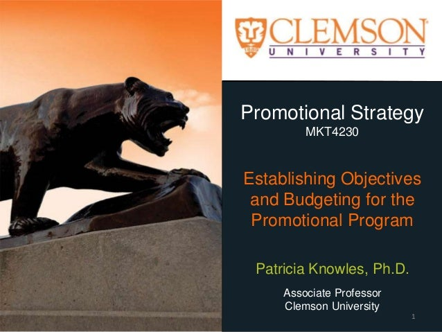 Promotional Strategy MKT4230 Establishing Objectives and Budgeting for the Promotional Program Patricia Knowles, Ph.D. Ass...