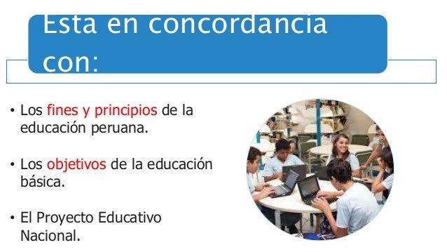 Cumple una función pedagógica de acompañamiento al docente en su labor cotidiana.