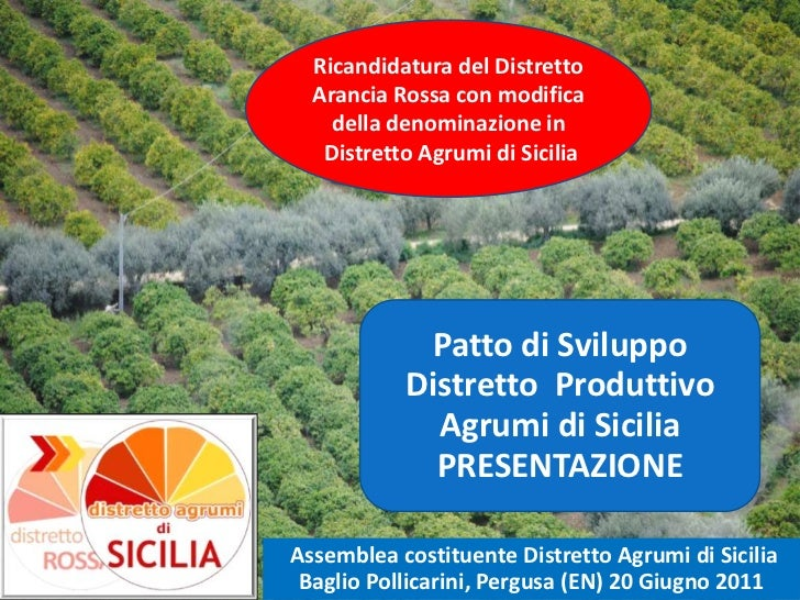 Ricandidatura del Distretto Arancia Rossa con modifica della denominazione in Distretto Agrumi di Sicilia<br />Patto di Sv...