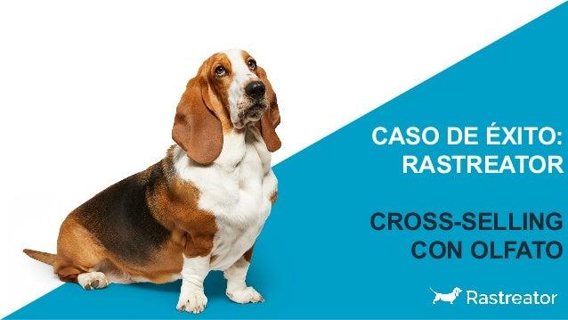 CASO DE ÉXITO: RASTREATOR CROSS-SELLING CON OLFATO