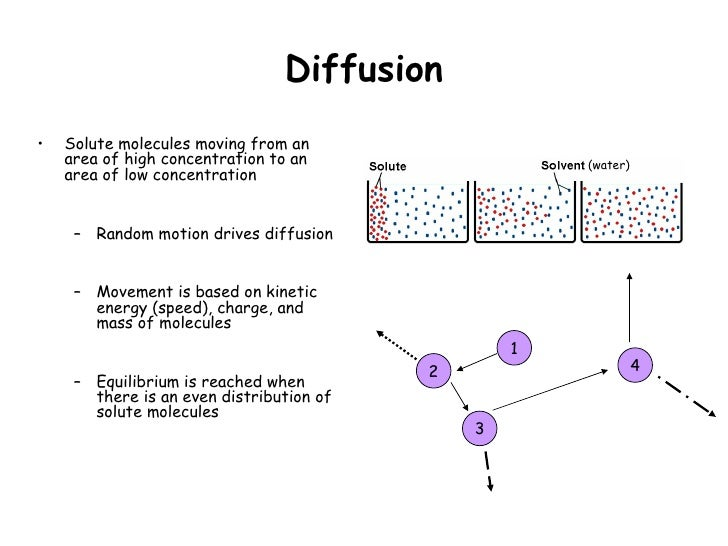 osmosis and particles diffusion Main difference the main difference between diffusion and osmosis is, diffusion is a process in which movement of particles take place from a region of higher.