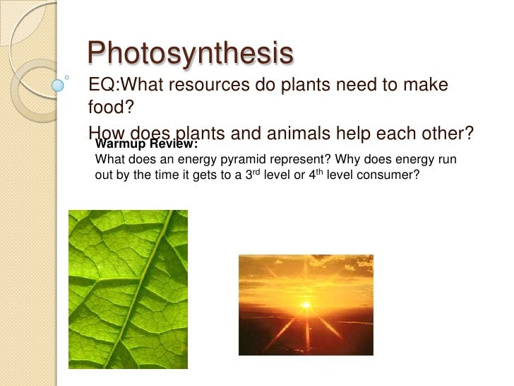 Photosynthesis<br />EQ:What resources do plants need to make food?<br />How does plants and animals help each other?<br />...