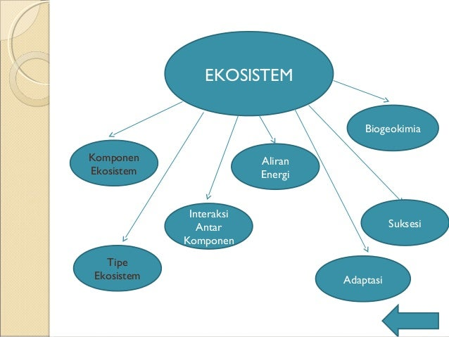 Ppt ekosistem ekosistem ccuart Image collections